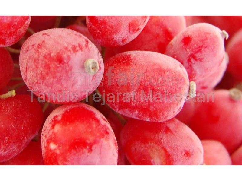 Barberry Juice Concentrate, packed in 265 kg metal drums