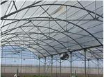 نایلون گلخانه uv دار عرض 10 متر 5% یووی سفید / سبز
