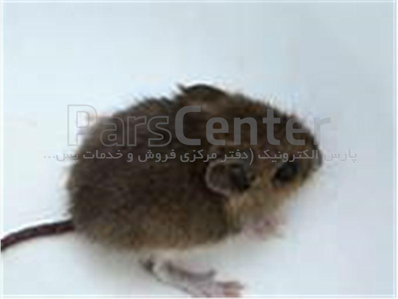 دستگاه دفع موش و حشرات مدل uaw925 ازمحیط اداری
