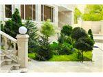 طراحی کاشت محوطه و فضای سبز