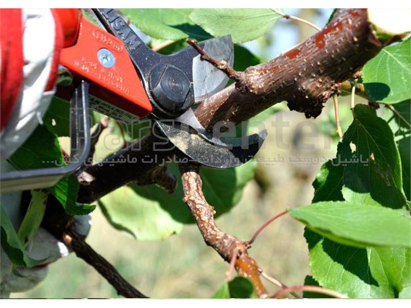 قیچی باغبانی،قیچی هرس باغ با قدرت ساخت کشور ایتالیا