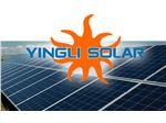 پنل  خورشیدی پلی کریستال 255 وات YINGLI