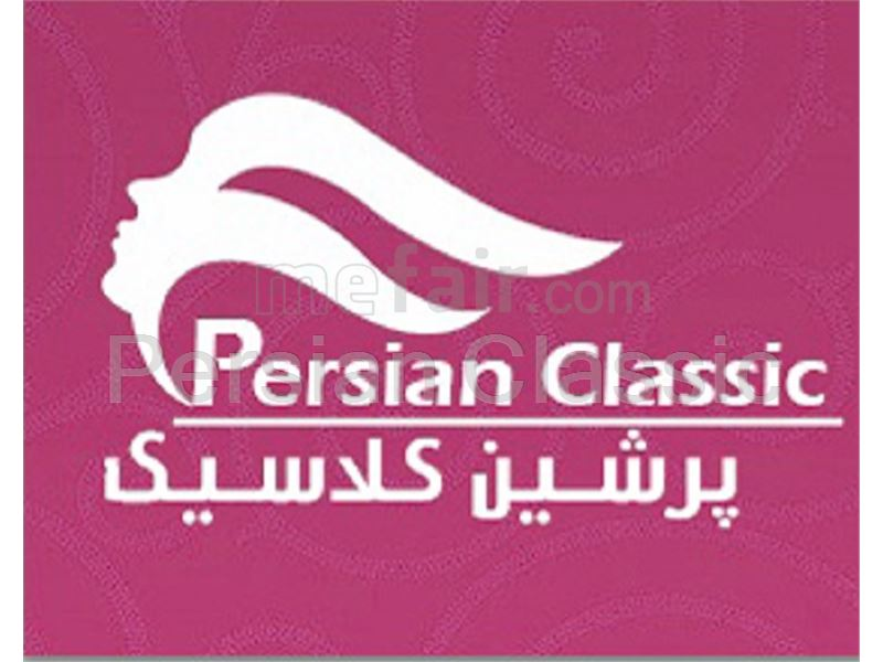 Men's Electric Chair Persian Classic