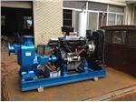Engine driven (Diesel) FIRE Pump