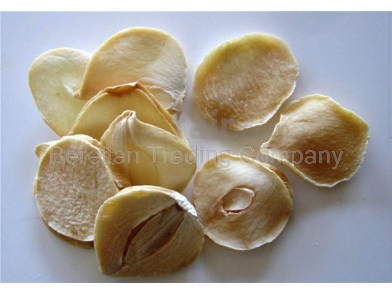 Shallot ( Allium hirtifolium )