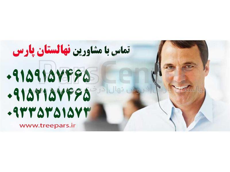 تغییر نام فروشگاه نهالستان ایران درخت به فروشگاه نهالستان پارس