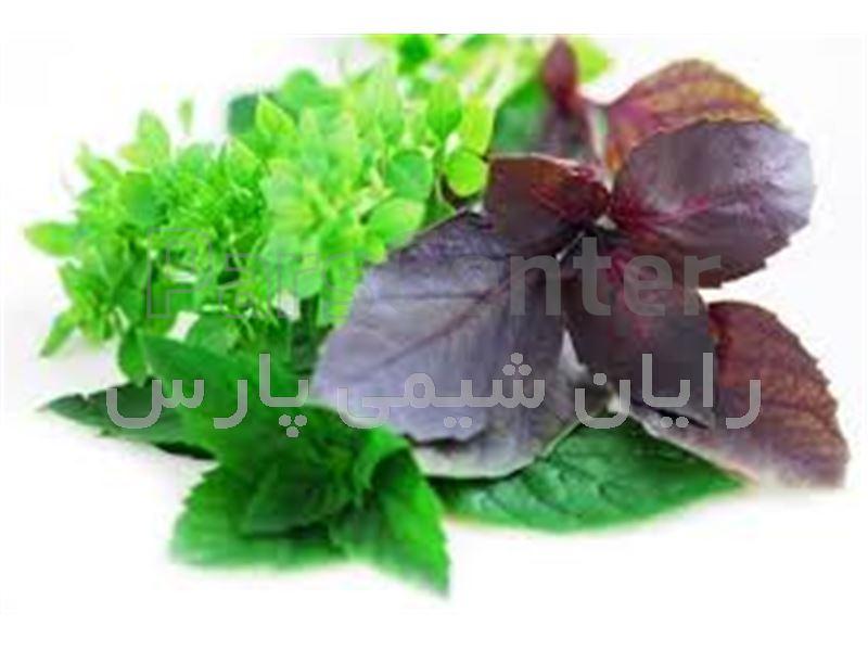 طعم دهنده طبیعی ریحان 100٪ طبیعی و بهترین کیفیت