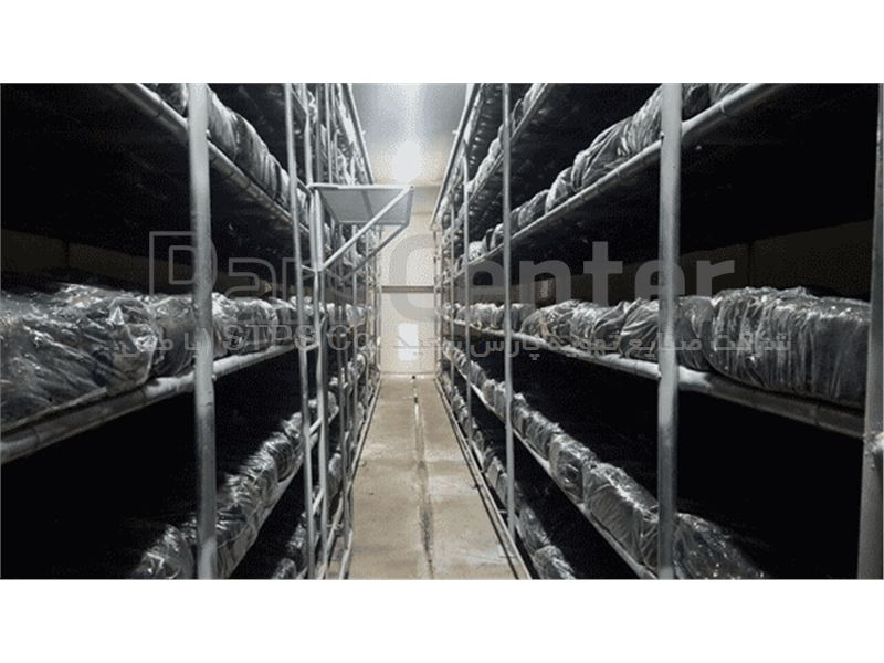 قفسه بندی سالن های پرورش قارچ خوراکی