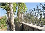 حفاظ شاخ گوزنی مشکی مدل 50*50