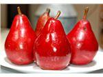 گلابی  قرمز آنجو#Red Anjou Pear