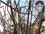 نمونه کار حفاظ شاخ گوزنی تهرانپارس جنوبی 2