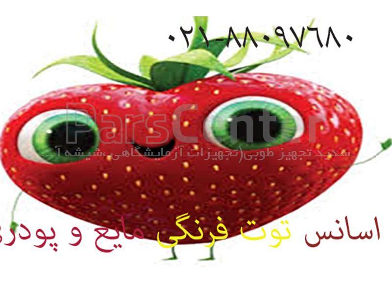 اسانس توت فرنگی ژیودان سویس- طعم دهنده توت فرنگی مایع و پودری