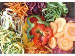 خردکن انواع سبزیجات - ساخت آلمان