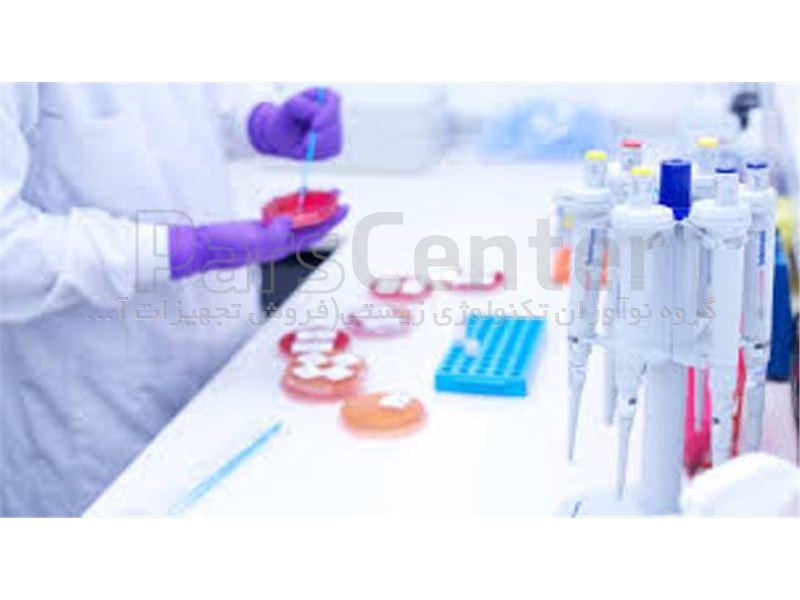 فلاسک کشت سلول 75 سانت فیلتر دار بچسب