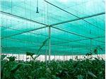 توری سایبان گلخانه uv دار عرض 10 متر 50% سایه انداز