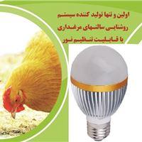 لامپ led مرغداری