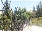پروژه حفاظ شاخ گوزنی جاجرود 5