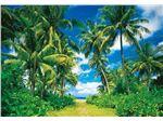 پوستر جزیره