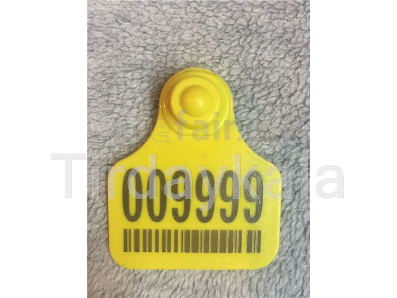 Camel ear tag - two pieces - IVO