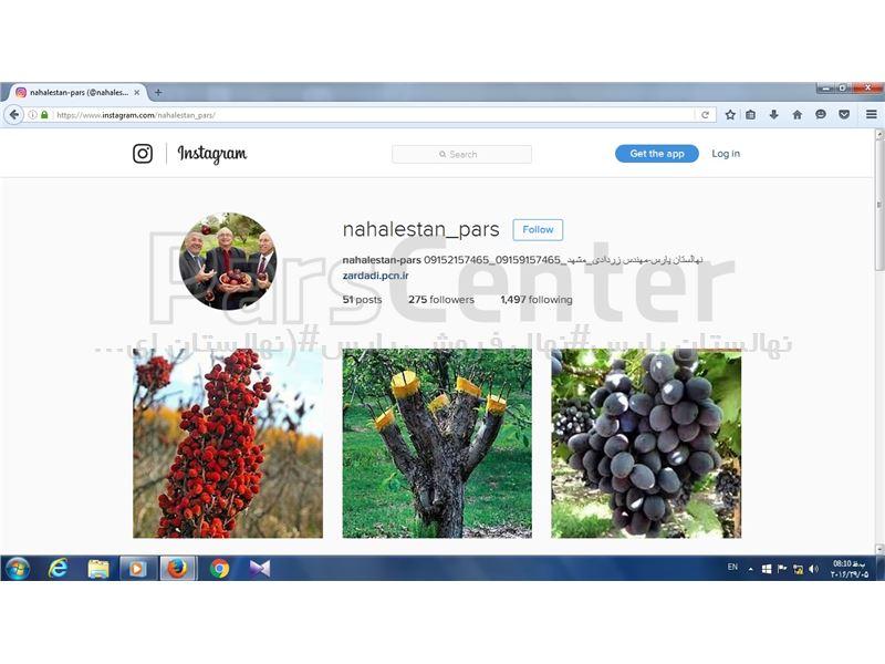 افتتاح رسمی صفحه اینستاگرام نهالستان پارس