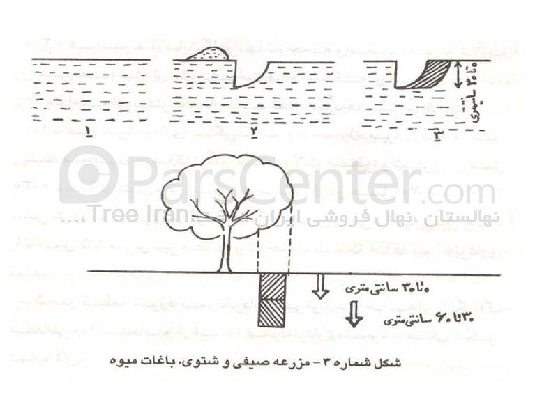 روش نمونه برداری از خاک زراعی