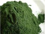 جلبک اسپیرولینا 100 گرمی مکمل غذای ماهی زینتی