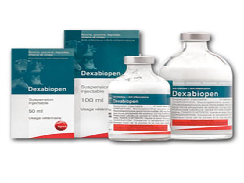 دگزابایوپن | Dexabiopen
