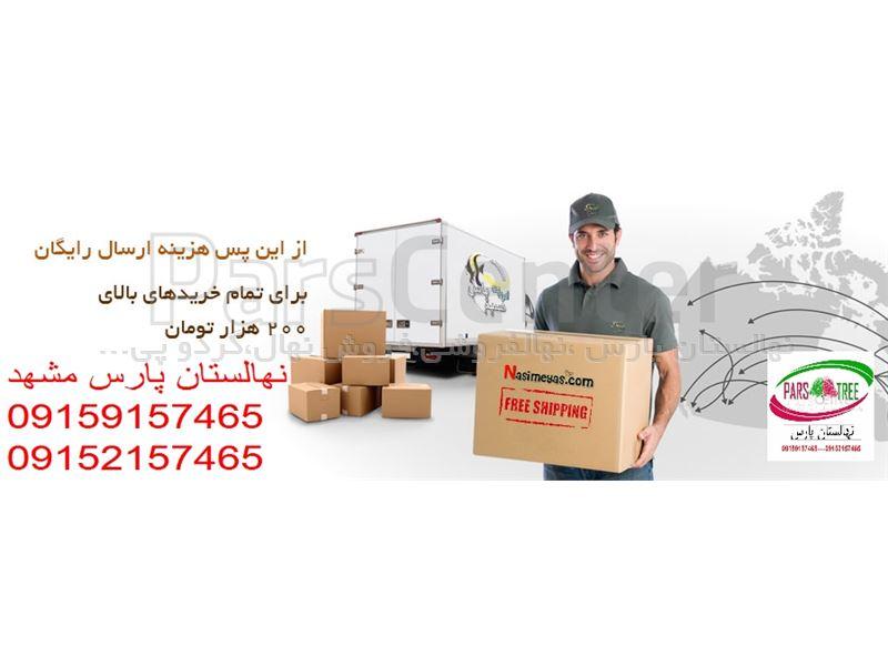 ارسال  نهال به شهرهای ایران-نهالستان پارس