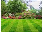 محوطه سازی و حیاط سازی باغ و ویلا و مجتمع های مسکونی