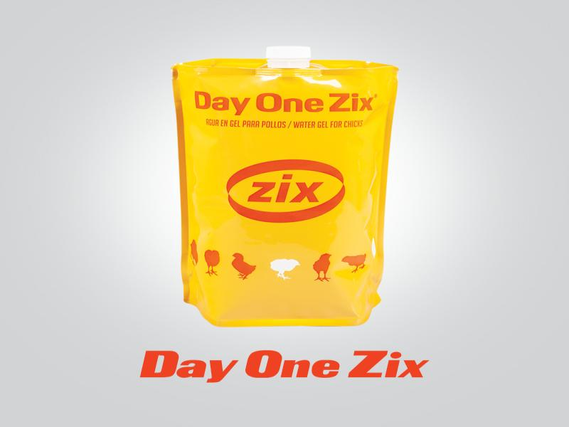 Day one zix - دی وان زیکس