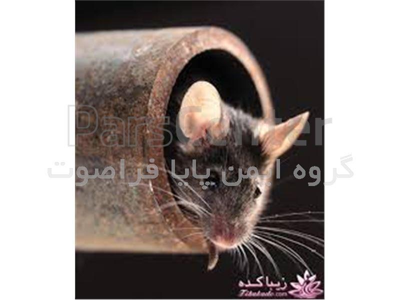 دورکننده موش ویژه محیط های باز و مزارع