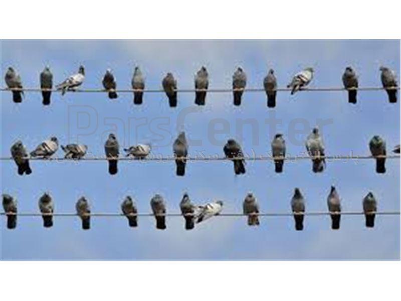 دستگاه دفع تخصصی کبوتر 987 پارس الکترونیک