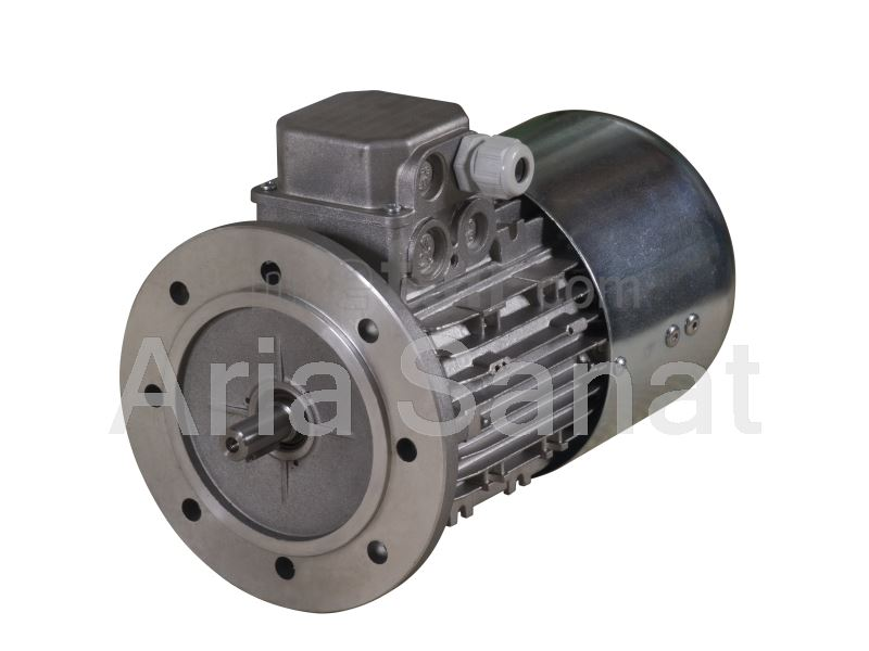 Motogen Dual speed Electric motor