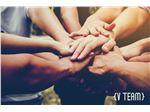 خدمات توسعه سازمانی وی تیم (وارکان)