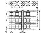 زنجیر غلتکی سه ردیفه سری B اروپایی   SIRCATENE Triplex Roller Chain DIN 8187 European
