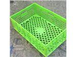 سبد پلاستیکی با رنگ سبز