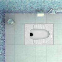 توالت زمینی