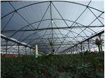 نایلون گلخانه uv دار عرض 8 متر 5% یووی سفید/ سبز
