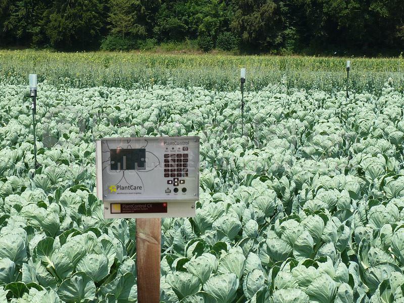 هوشمند سازی مزارع کشاورزی